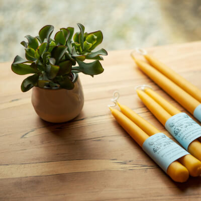 Beeswax Dinner Candles Hand Dipped 6 Hour