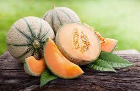 Melon Canteloupe