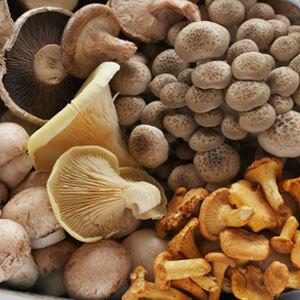 Irish Grown Organic Mixed Mushrooms