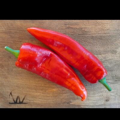 Ramiro Sweet Red Peppers