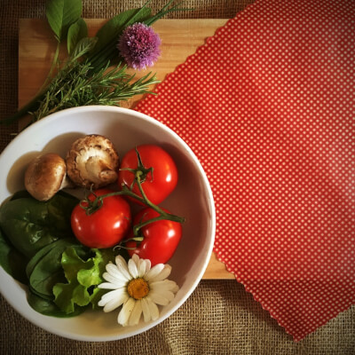 12 Inch All-Purpose Wrap - Red Gingham