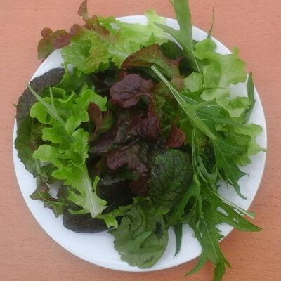 Mixed Organic Oriental Salad Leaves