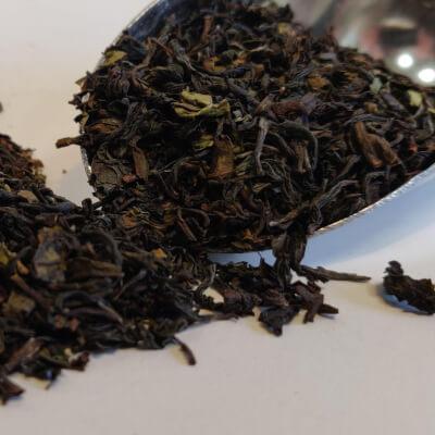 Guru Tea Darjeeling