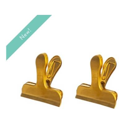 Brass Clips Set Of 2
