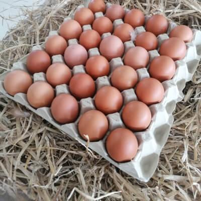 30 Pasture Raised Eggs
