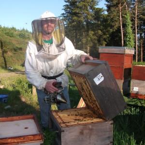 Lannleire Honey