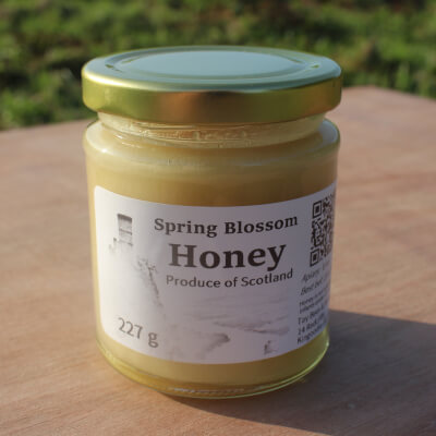 Spring Soft-Set Blossom Honey