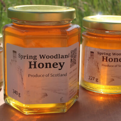 Spring Woodland Honey