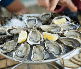 6 No. Ancient East Oysters