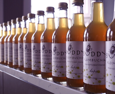 Buddy Kombucha - Mixed Case