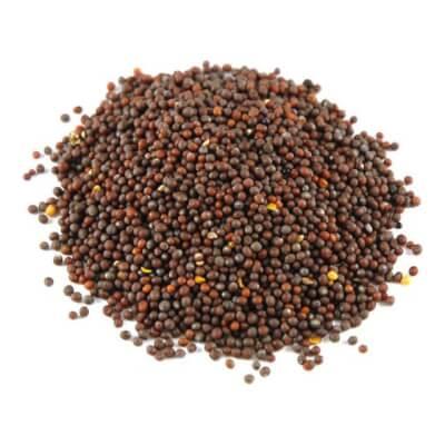 Mustard Seed Brown