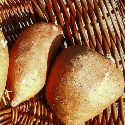 Organic Sweet Potatoe