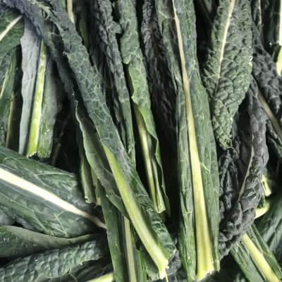 Organic Black Tuscany Kale