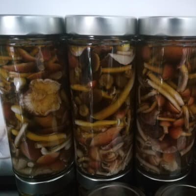 Pickled & Marinated Speciality Mushrooms