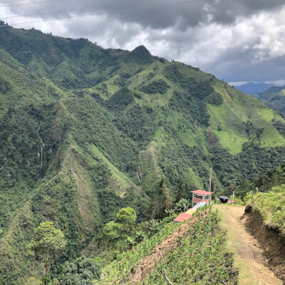 San Lorenzo - Colombia - Coarse Grind