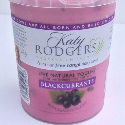 Yogurt Blackcurrant 1x 490 G