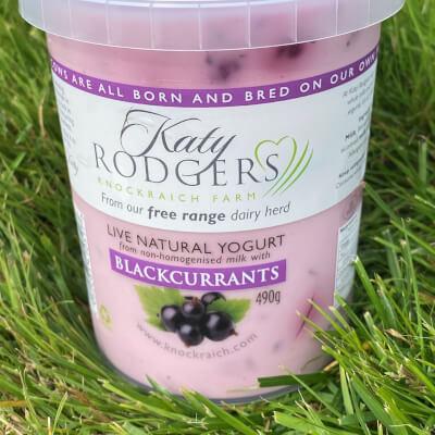 Yogurt Blackcurrant 490G