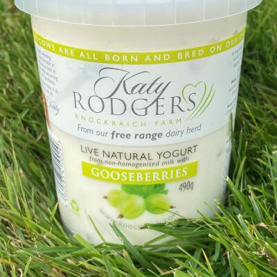 Yogurt Gooseberry 490G