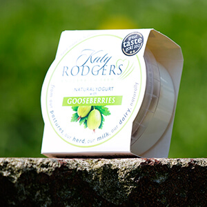 Yogurt Gooseberry 1 X 150 G