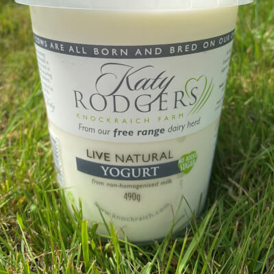 Yogurt Natural Live