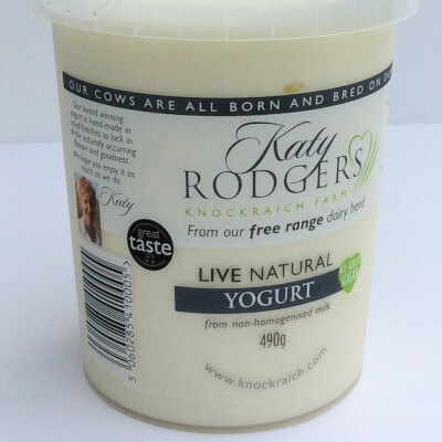Yogurt Natural 1 X 490 G