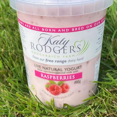 Yogurt Raspberry 490G