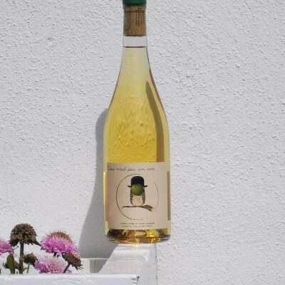 Ceci N'est Pas Un Vin - Conservatoire De Vignes Anciennes