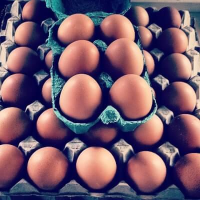 Large Free Range Eggs