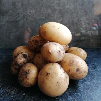 3Kg Potatos (Vitabella)