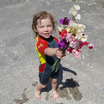 Sweet Pea Flowers - Grown In Owning/Piltown -