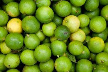 Limes (An Spáin) 300G
