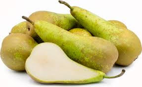 750G Pears Conference (Holland)