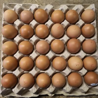 Tray Of Small Eggs!  (30Eggs)