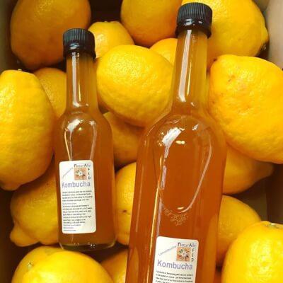 Kombucha Lemon