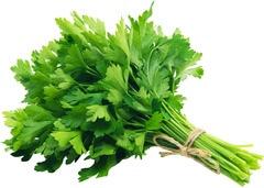 Organic Flat Leaf Parsley 40G (Special Offer)