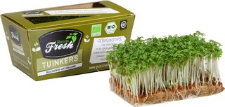 Organic Micro Herb Garden Cress