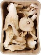 Org Oyster Mushrooms
