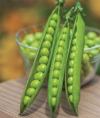Organic Peas In Pods