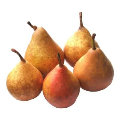 Pears Gieser -Wildeman