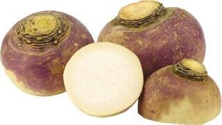 Organic Turnip 750 Approx
