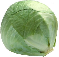 Organic White Cabbage
