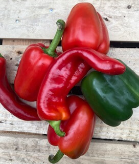 Peppers Organic Medley