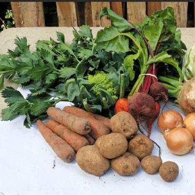 Medium Organic Vegbox