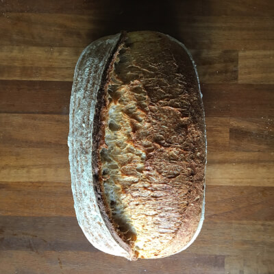 House Sourdough