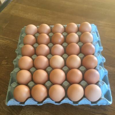 30 Free Range Medium Eggs