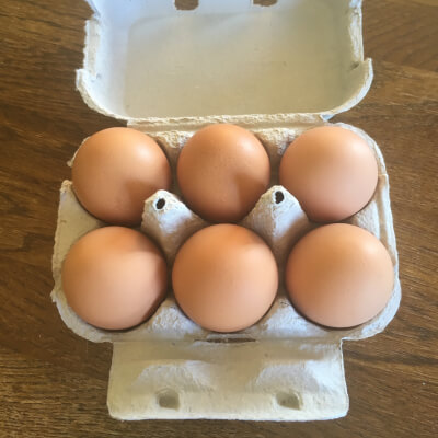 6 Medium Free Range Eggs