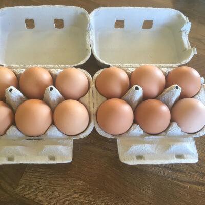 12 Medium Free Range Eggs
