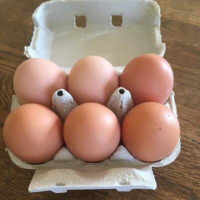 6  Jumbo Eggs