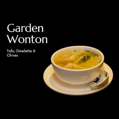 Garden Won Ton Kit | Tofu & Chives