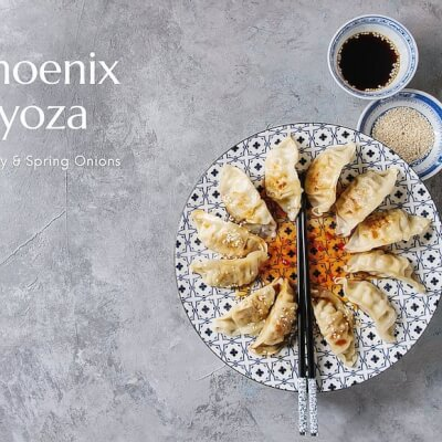 Phoenix Gyoza Kit | Turkey & Spring Onions